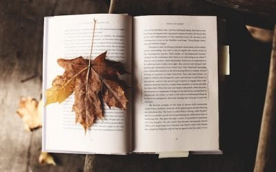 Mid-year Motivation: Books to Inspire Momentum